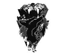 il lupo e l'ombra