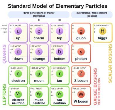 modello standard